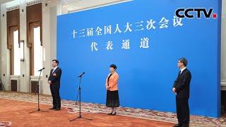 """《十三届全国人大三次会议""""代表通道""""》 20200522   CCTV中文国际"""