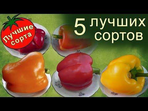 Лучшие Сорта Перца Сладкого | сладкого | сладкий | семена | лучший | лучшие | купить | сорта | перца | перец | се