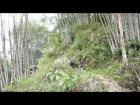 Sulawesi south to north-part1