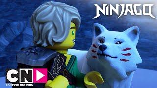 Ниндзяго | Новый компаньон | Cartoon Network