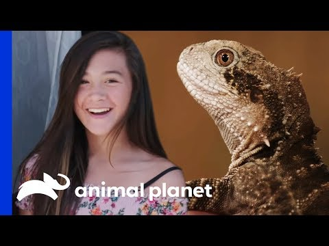 Greg Surprises His Daughter With A Reptile Themed Party! | Scaled