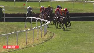 Vidéo de la course PMU GRAND STEEPLE-CHASE DE DAX