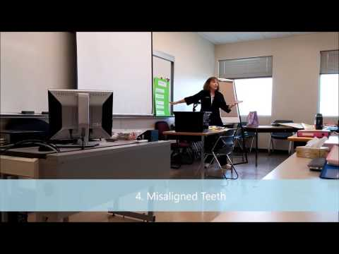 Ellen Ross Capstone Project Dental Dam for Dental Hygiene Students