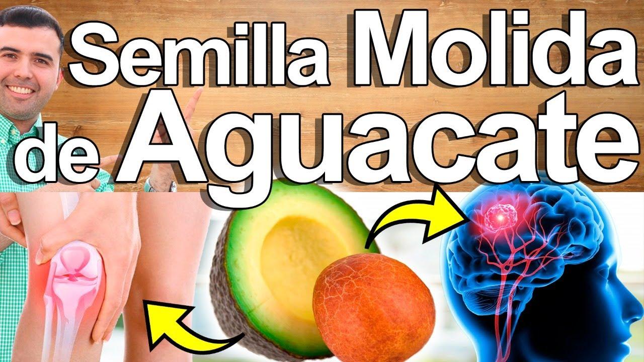 Semilla De Aguacate Molida - Para Qué Sirve? - Beneficios Para Tu Salud Y Belleza
