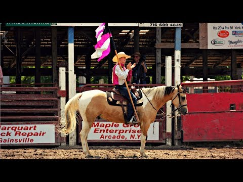 Hand Clap || Rodeo Horse Music Video