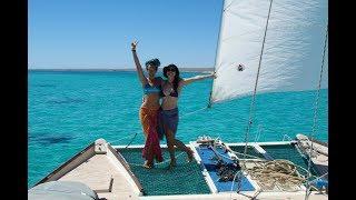 Swimming With ALOT Of SHARKS!  - Sailing Tangaroa