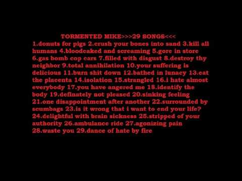 TORMENTED MIKE*****29 SONGS*****