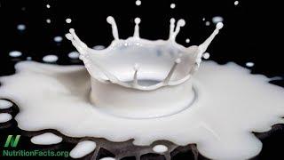 Mohla by laktóza vysvětlit spojitost mezi mlékem a Parkinsonovou chorobou?