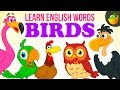 Birds | Pre School | Learn English Words Spelling For Kids and Toddlers