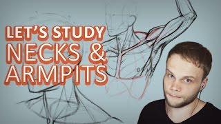 Study Necks and Armpits - Tutorial