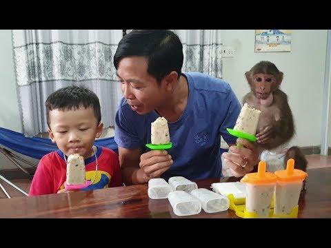 Baby Monkey | Doo Family Enjoys Banana Ice Cream Made By Mom