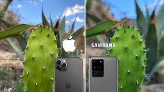 iPhone 11 Pro Max vs Galaxy S20 Ultra | Comparativa de cámaras