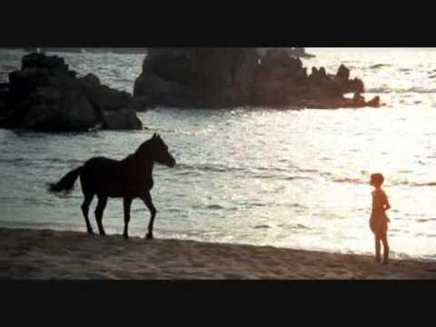 The Black Stallion Deluxe