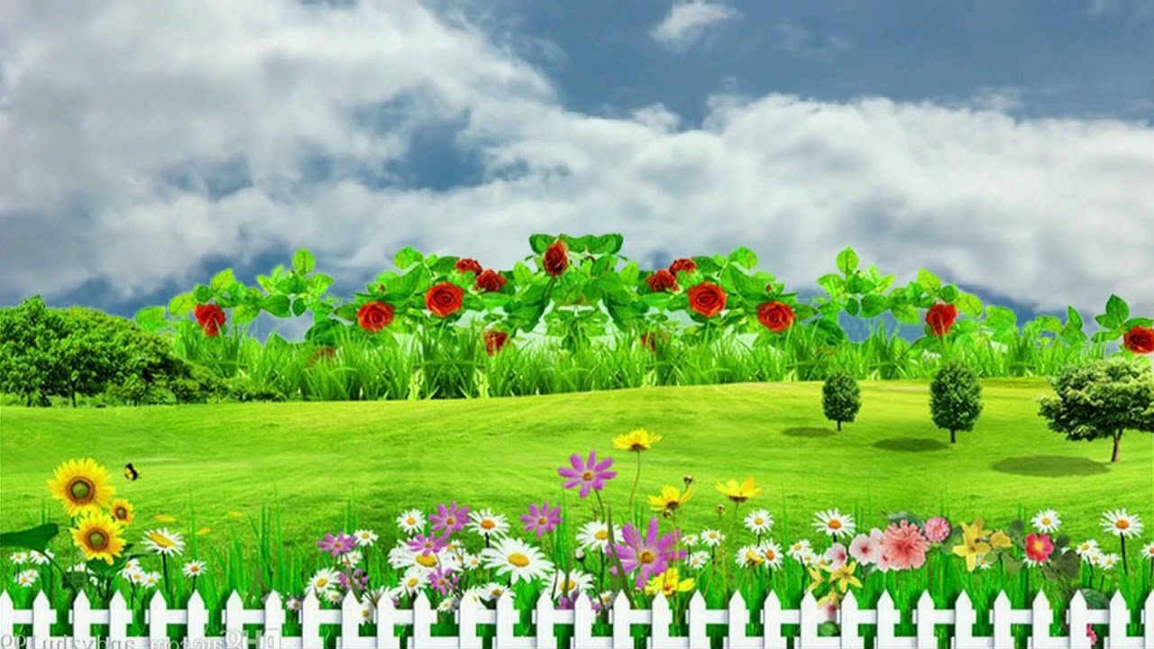 natural flower garden background video beautiful flower garden bsmotion youtube natural flower garden background video beautiful flower garden bsmotion