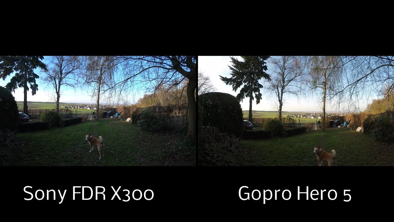 Sony FDR X3000 Vs Gopro Hero 5