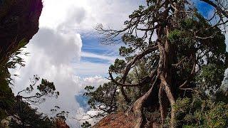 我的百岳10年(愛上山041)