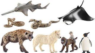 Schleich Animals Figures Hyena Mandrill Wolf Pinguin Zoo Toys