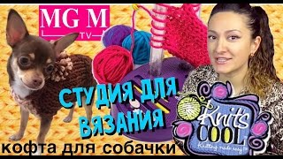 Как связать кофту для собачки на студии для вязания Knits Cool обзор на русском