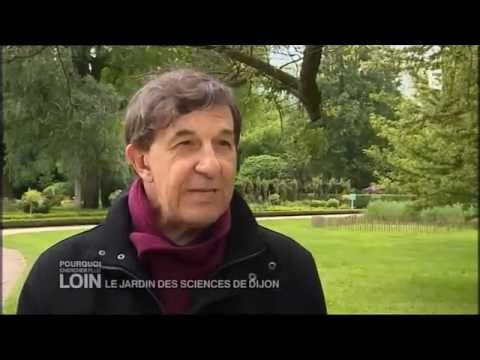 Pourquoi chercher plus loin : Le jardin des Sciences de Dijon