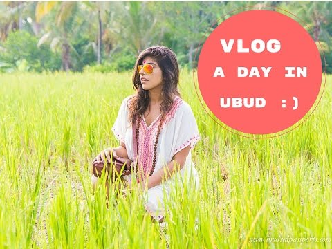 Bruised Passports | Ubud Vlog | A day in the life of a digital nomad