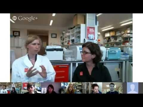 British Heart Foundation - Mending Broken Hearts, Lab Live Q&A Session