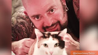 'My Cat From Hell' Host to Tame Portland 911 Cat