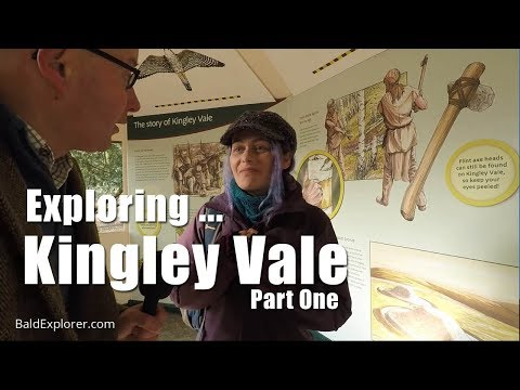 Exploring Sussex: The Ancient Yew Trees of Kingley Vale - Part 1