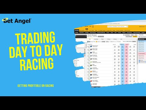 Peter Webb - Bet Angel - My strategy for trading 'normal' markets