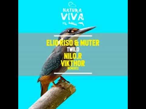 Elio Riso & Muter - Twilo (Vikthor Remix)[64kb/s]
