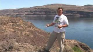 Gingko Petrified Forest: Cruisin