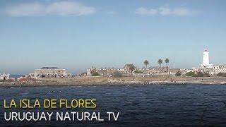 LA ISLA DE FLORES