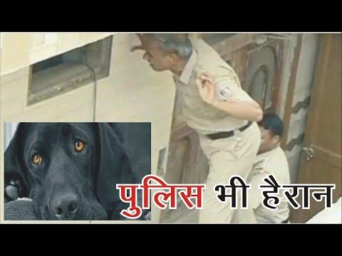New Delhi : दिल्ली : बुराड़ी कांड में पुलिस को है इन सवालों के