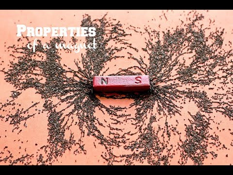 Properties of a magnet | Physics experiment