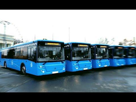 Работа водителем автобуса