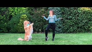 BRAVE: First Dog Dancing Routine of Indy the Hovawart!