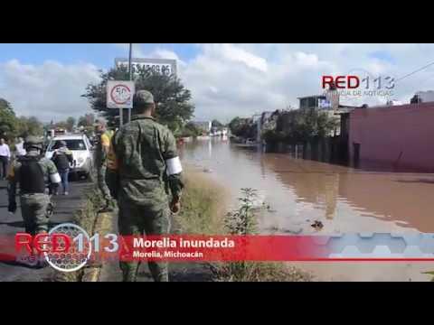 Morelia inundada
