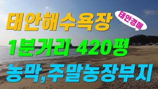 (유찰2021/03/16 46,771,000원)태안해수…