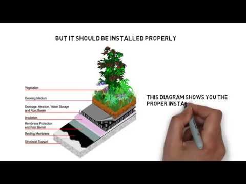 How To Install A Green Roof Youtube
