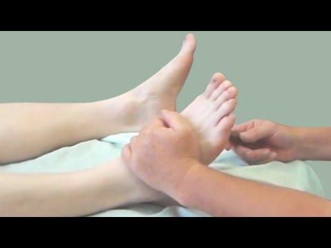 Анатомия и биомеханика стопы и голени. Рефлекторные зоны стопы Рефлекторные изменения, работа с ними