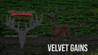 NXT Level Deer Supplements VELVET GAINS: Kickoff