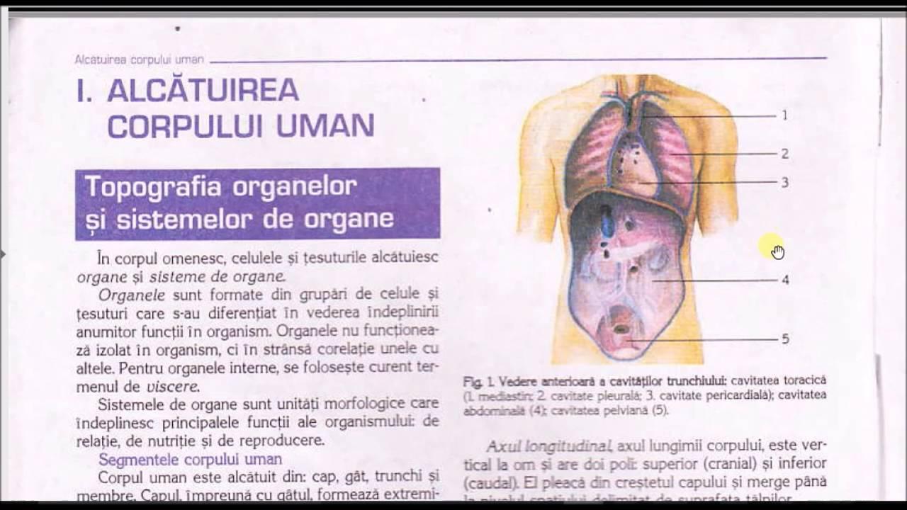 1.ALCATUIREA CORPULUI UMAN - YouTube