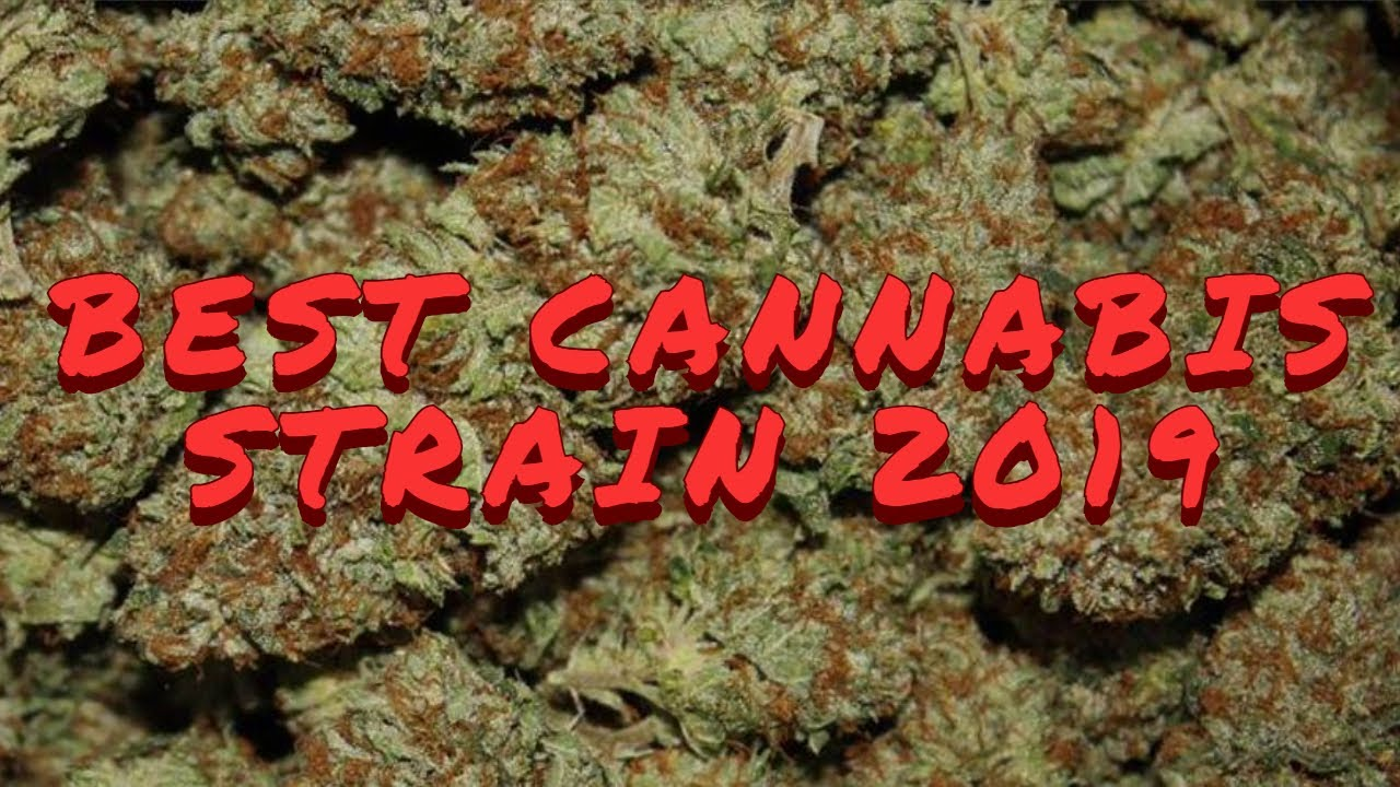 TOP CANNABIS STRAIN 2019/ Ultimate Video Compilation