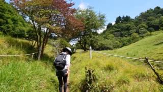 日本百名山 甲州 大菩薩嶺(前編) 2016年8月6日 塩山・裂石から丸川峠へ