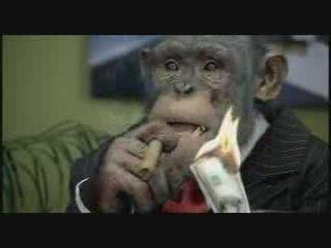 CareerBuilder.com: Monkey Business (Up - Down Profitability)