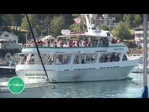 Cap'n Fish's Whale Watch & Puffin Tour
