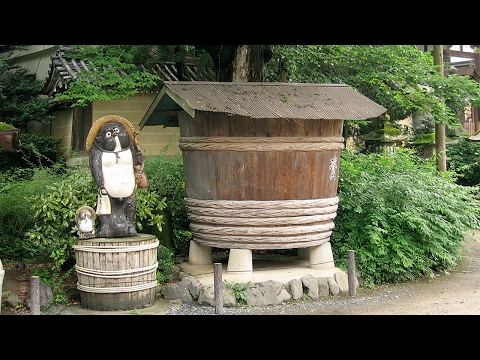 HOT NEWS Takahama 2017 Best Of Takahama Japan Tourism