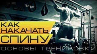 Как накачать спину Основы тренировки(В этом видео нам расскажет о том как накачать спину и покажет свою тренировку спины чемпион Европы по бодиб..., 2013-09-04T06:28:33.000Z)