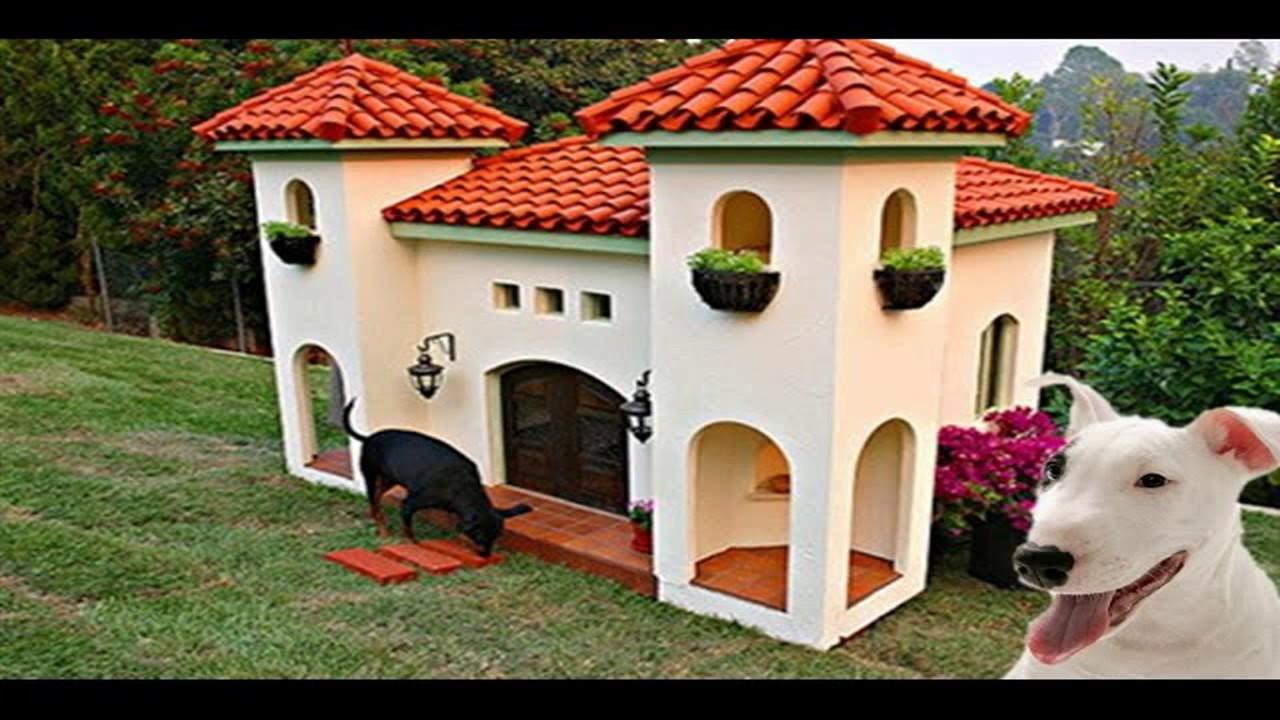 20 Most Luxurious Dog Houses - YouTube
