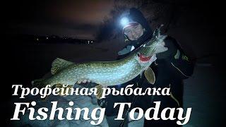 видео Рыбалка в предрассветный час. Первый жерех!