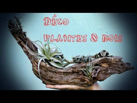 Dco Plantes  Bois  YouTube
